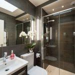 flat-1-67-showerroom